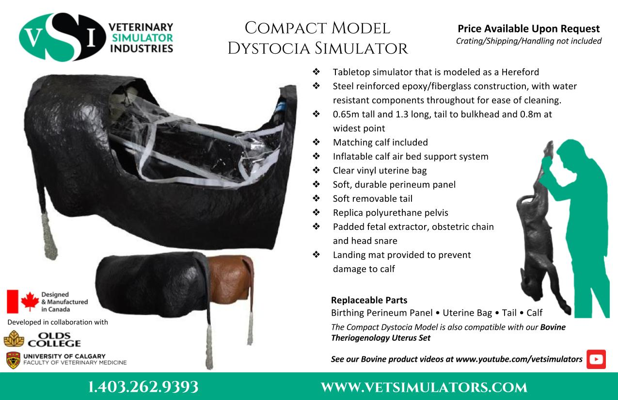 Compact Dystocia Model | Veterinary Simulator Industries